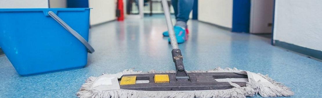 Tienda online Productos de limpieza y fregasuelos profesionales